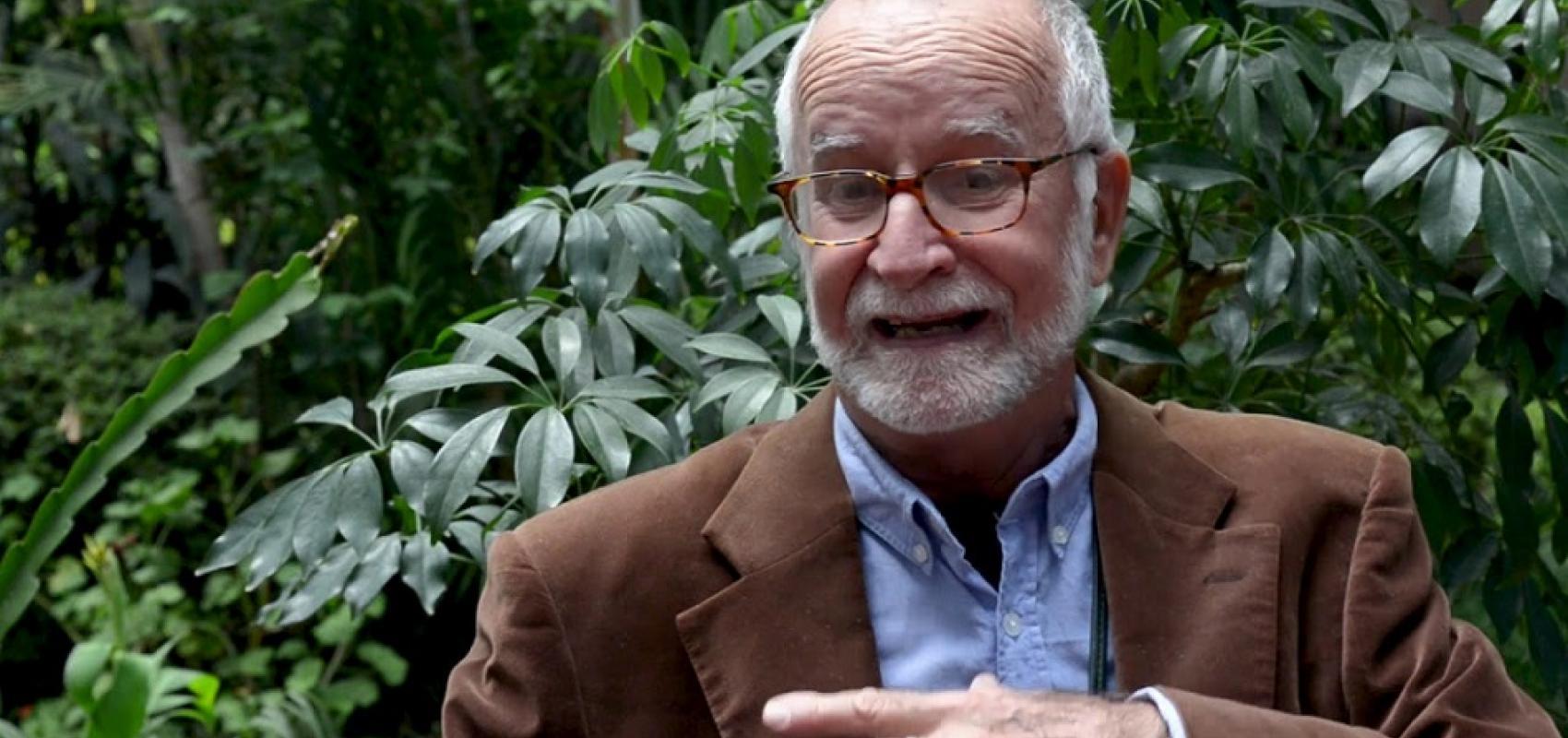 El crítico y curador de arte Nelson Herrera Ysla. Foto: Tomada de Cubacine.